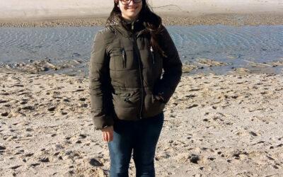 Bücherwurm im Wattenmeer